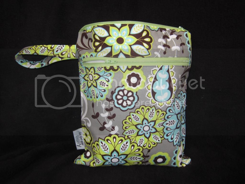 Splendid Paisley &lt;br&gt; Small Wet/Dry Bag